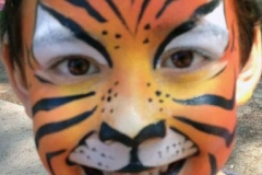 tiger full fac